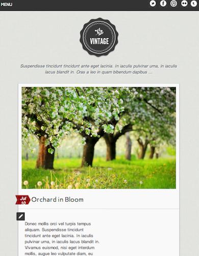 Joomla 2.5 Tumblr Clone Template - VIntage
