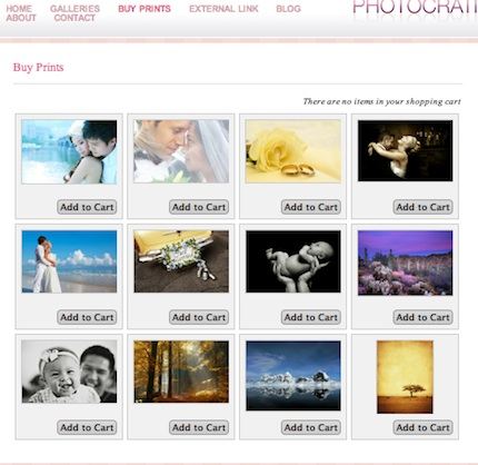Wordpress Wedding Photography Ecommerce Theme - Prime